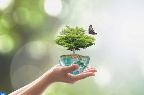 Article : RDC : la technologie pour aider à la protection de l'environnement