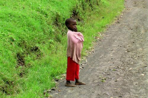 Article : RDC : la mystérieuse guerre de l'Est